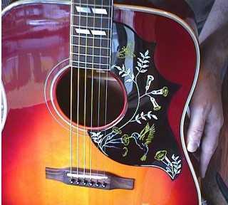 Fake Gibson Hummingbird Related Keywords & Suggestions